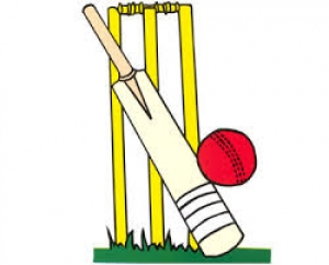 Cricket Festivals - Garlinge Primary School